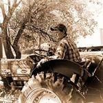 Alex Lovelace - @lovelace.alex - Instagram