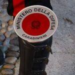 Alex Spagnola - @alex_spagnola - Instagram