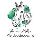 Alisa Müller - @pferdeosteo_alisa_mueller - Instagram