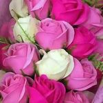 Amal Mekouar - @amal.mekouar.96 - Instagram