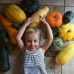 Amanda Engelbrecht - @planting4six - Instagram