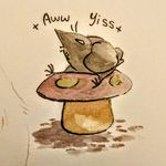 Amanda Maclay - @modernsalt - Instagram