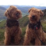Amber&Monte - @amber_and_monte - Instagram