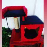 Veronica Analia Saldias - @pelufresa - Instagram