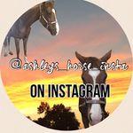 Ashley Falcone - @ottb_hearts - Instagram