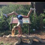 Ava Godwin - @gymnast4094 - Instagram