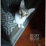 Becky Milligan - @becky_milligan_influencer - Instagram