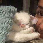 Bernice Solis 🐱 - @berniciesolis - Instagram