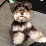 Bernie Barnes - @berniebarnes1 - Instagram