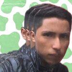 Bertin Mendoza - @bertin_mendozar - Instagram