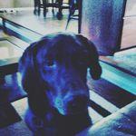 Ethan legate - @ethanlo7 - Instagram