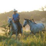 Cowboy Bob Bilotta - @bob_bilotta - Instagram