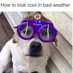 Bob wehadababyitsaboy - @bwehadababyitsaboy - Instagram