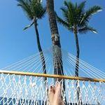 Bonnie Seguin - @bonseguin - Instagram