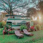 The Brandy Bus - @thebrandybus - Instagram