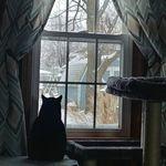 Brenda Young Stimmel - @brendaks62 - Instagram