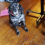 Brianna Gleason - @brianna.gleason.75 - Instagram