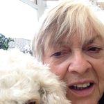 Carole Phipps - @carphipps - Instagram