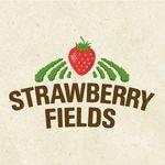 Strawberry Fields Lifton - @strawberryfieldslifton - Instagram