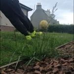 Colin Ferguson - @colin_ferguson - Instagram
