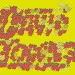 David Towns Inc. - @smellmyownflowers - Instagram