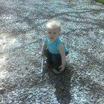 DeWayne Fritz - @fritzybowtieguy - Instagram