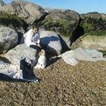 Barbara Diane Kett - @kettbarbara - Instagram