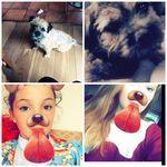 DIXIE,DUDLEY,ELLA,ANNIE - @dixie_dudley_ella_annie - Instagram