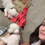 Dollie And Dudley - @dolliedudley - Instagram