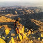 Donna Shimmin - @donnashim - Instagram