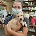 Dr. Lisa Jones - @lisa.jones.dvm - Instagram