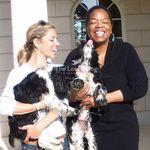 Tamar Geller The Loved Dog - @theloveddog Verified Account - Instagram