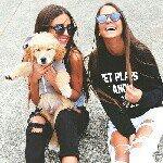 La vie d'une Framboise - @fr4mboise_life - Instagram