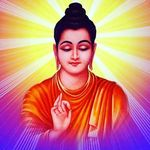 Buddha's Photo Gallery - @buddhaphotosgallery - Instagram