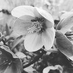 Helen Dye - @helen_dye - Instagram