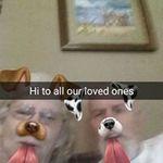 Jan McGinnis - @jan.mcginnis3 - Instagram