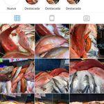 juan fish - @juan.fish - Instagram