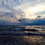 Leah Crosby - @_leahcrosby - Instagram