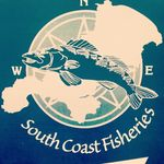 Louis Smart - @southcoastfisheries - Instagram