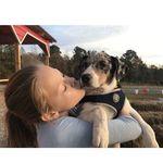 Maelin cronin - @asmr._.obsessed - Instagram