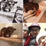 Manuel Hammer - @manuel__hammer - Instagram