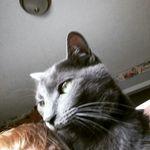 Melinda Aldridge - @1972.mra - Instagram