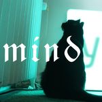 Mindy Hilton - @mindyhilton666 - Instagram