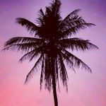 Muriel Shapiro - @murielxita - Instagram