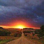 Nicholas Picard - @nic_picard1 - Instagram