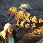 Noreen McGill - @noreen.mcgill - Instagram