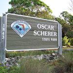 Oscar Scherer State Park - @oscarscherersp - Instagram