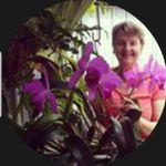 Patsy Phipps - @patsy.phipps1 - Instagram