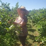 Roberta Ireland - @roberta.ireland - Instagram