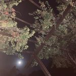 briena-b - @sabrina_stroud_classified_ - Instagram